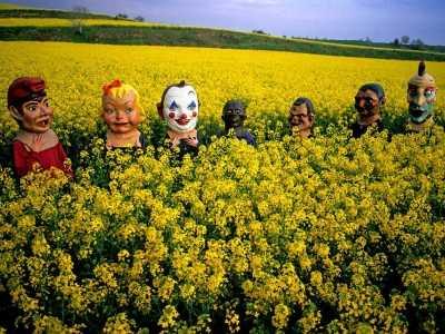 黄篇 感动世界的颜色之黄色篇