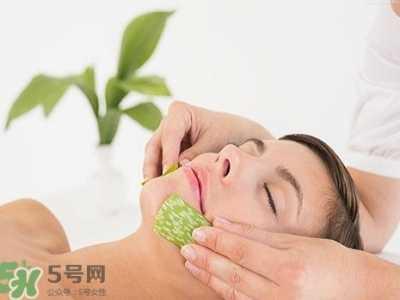 抹了芦荟为什么会痒 芦荟涂在脸上发痒是怎么回事